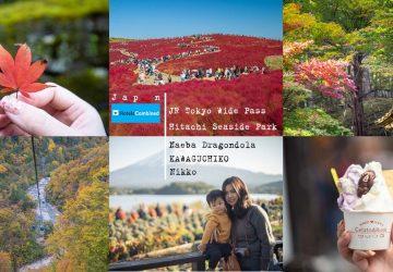 เที่ยวญี่ปุ่นกับครอบครัวแบบ chill chill พร้อมกับแนะนำ Pass สุดคุ้ม JR Tokyo Wide Pass แถมแนะนำโรงแรมและวิธีการจองในญี่ปุ่นราคาประหยัด